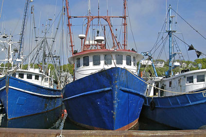 Morford blog boats fishing for Fishing boat manufacturers